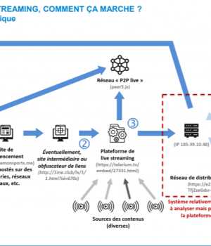 Hadopi: Anti-piracy agency says 24% Internet users in France
